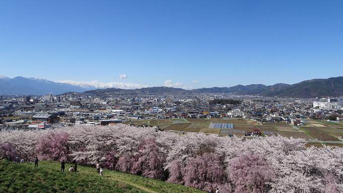 弘法山公園