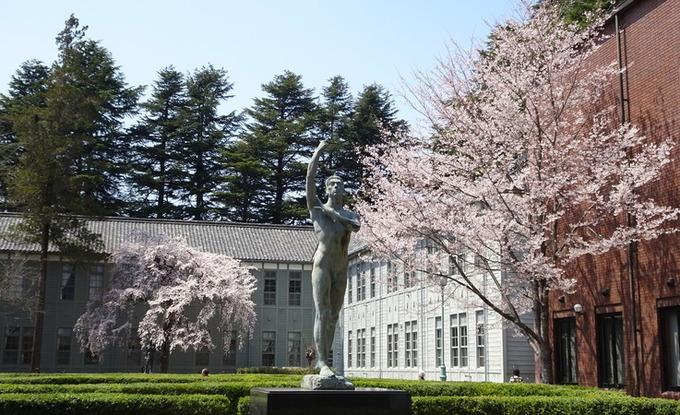 あがたの森公園のしだれ桜