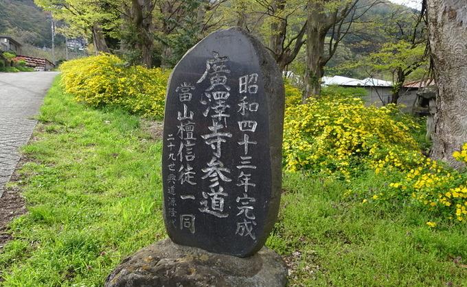 広沢寺のヤマブキ