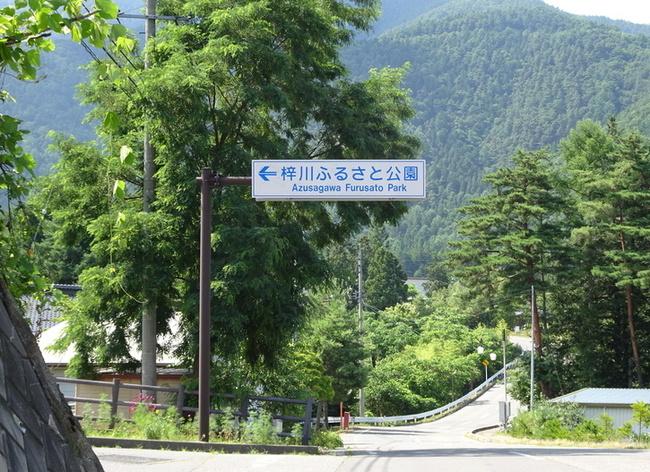 梓川ふるさと公園のあじさい