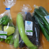【堀金物産センター】地元の新鮮な野菜が手に入る道の駅