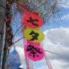 【徒士町の七夕飾り】松本の住宅街を飾る月遅れの七夕