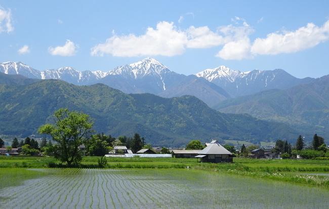 常念岳を望む春の安曇野