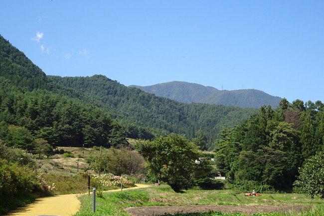 国営アルプス安曇野公園の田園風景