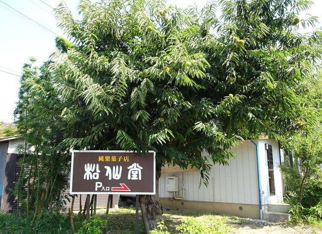 小布施の松仙堂