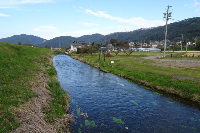 湧き水でできた小川