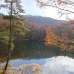 【御射鹿池】CMで一躍有名になった水面に映る紅葉