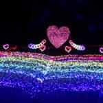 アルプス安曇野公園のイルミネーション  | 光のハートは日本最多!