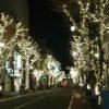 光輝く大名町通りの街路樹 | まつもとHikariのページェント